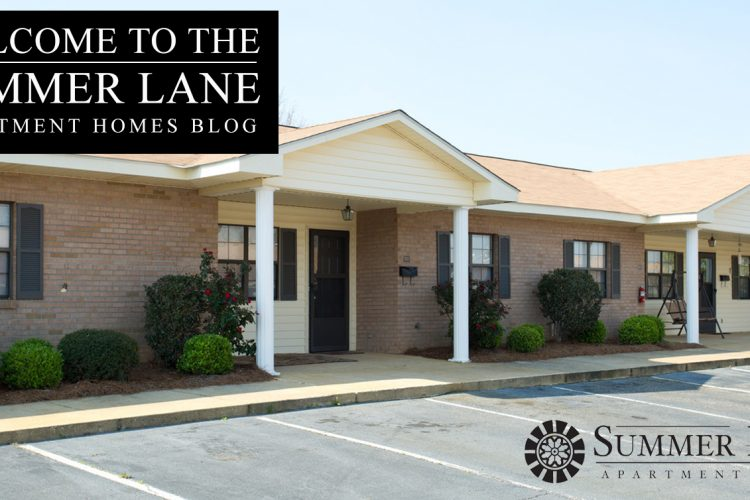 Welcome to the Summer Lane Apartment Homes Blog