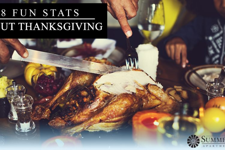 8 Fun Stats About Thanksgiving