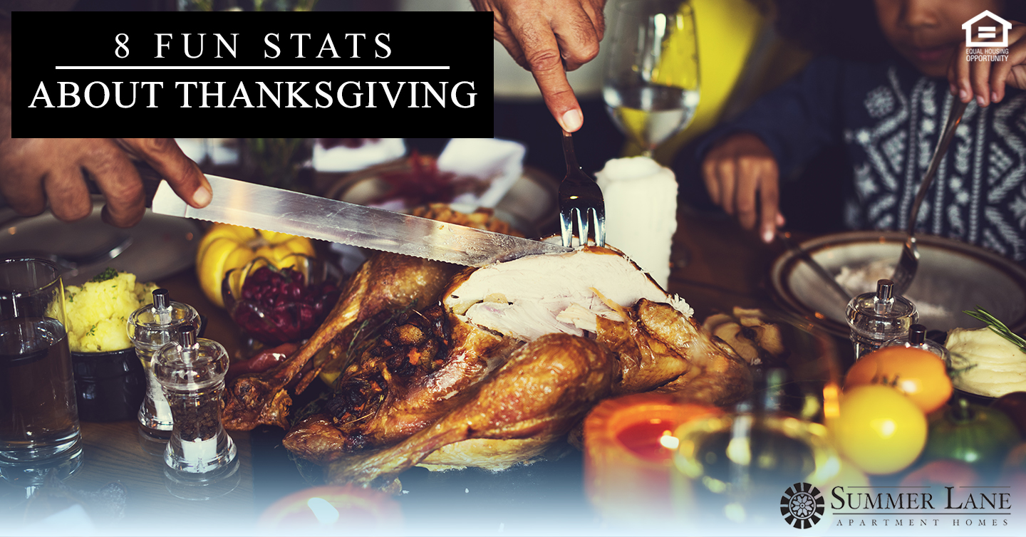 fun stats about Thanksgiving
