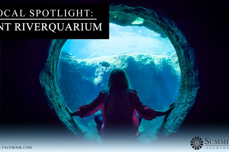 Local Spotlight: Flint RiverQuarium