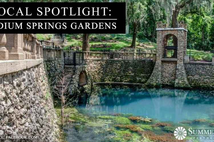Local Spotlight: Radium Springs Gardens