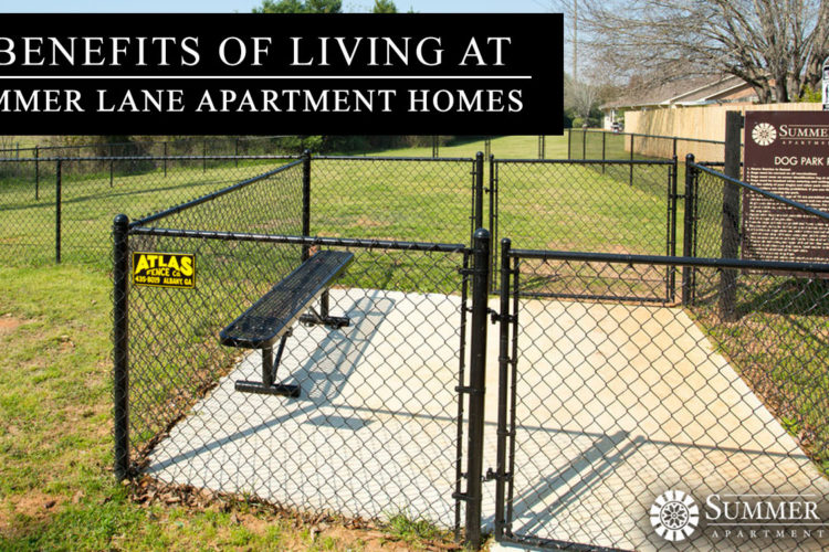 7 Benefits of Living at Summer Lane Apartment Homes