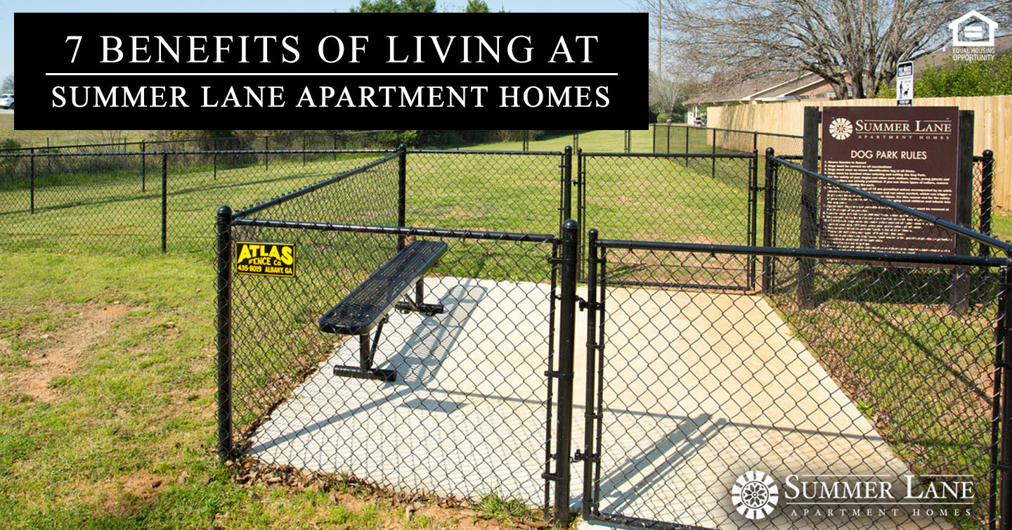 Benefits of Living at Summer Lane Apartment Homes