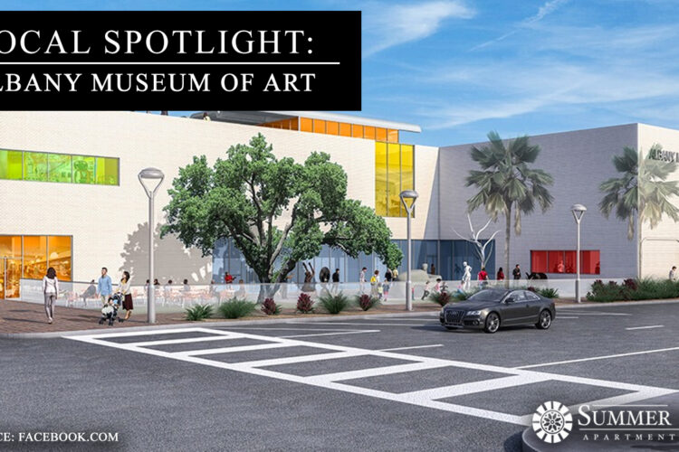 Local Spotlight: Albany Museum of Art