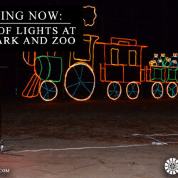 Festival of Lights at Chehaw Park and Zoo