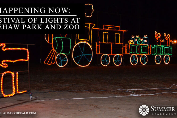 Happening Now: Festival of Lights at Chehaw Park and Zoo
